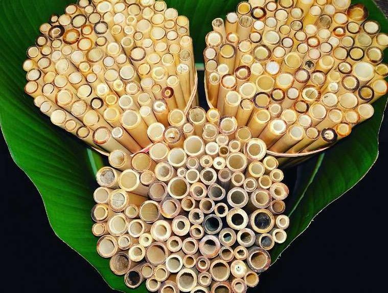 Vente de pailles en bambou